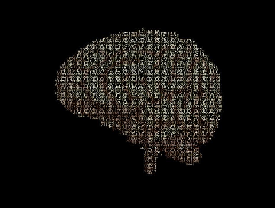 brain-1845943_960_720